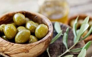 Выращивание оливкового дерева из косточки в горшке пошаговый процесс