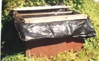 Удобряем сад и огород навозной жижей