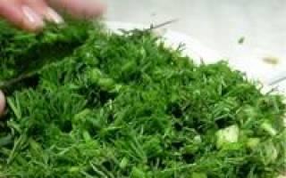 Как заготовить и хранить пряные травы зимой