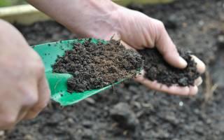 Для чего нужны и как использовать калийнофосфорные удобрения