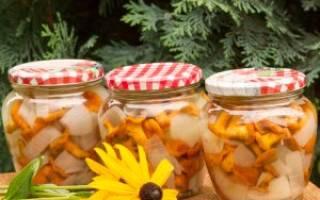 Как мариновать лисички на зиму простой и вкусный рецепт с фото