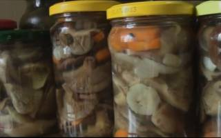 Особенности и советы по маринованию грибов