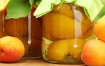 Способы заготовки абрикосов на зиму