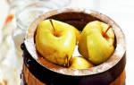 Рецепты и особенности приготовления моченых яблок на зиму